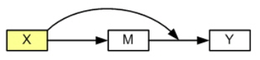 Image model1s