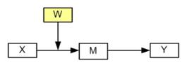 Image model2s
