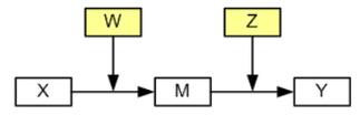 Image model4s